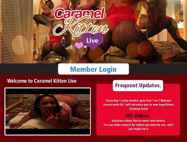 Caramel Kitten Live Pass Free