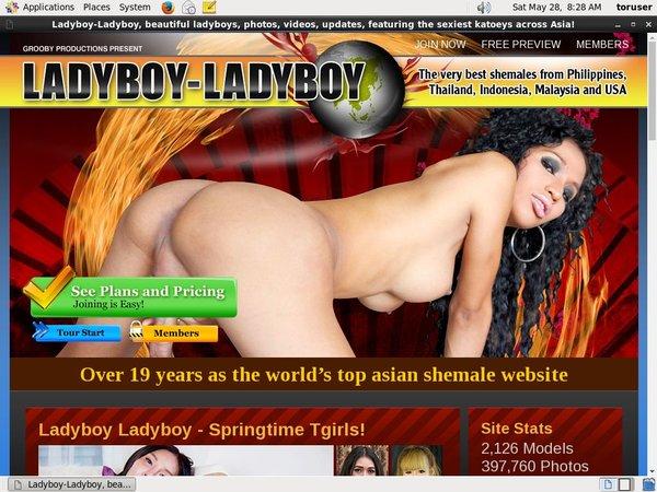 Ladyboy Ladyboy Hack Login